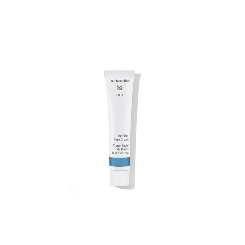 Crema Facial de Planta de la Escarcha Dr. Hauschka (40 ml)   Cosmética Natural Online   Maquillaliux Cosmética Ecológica