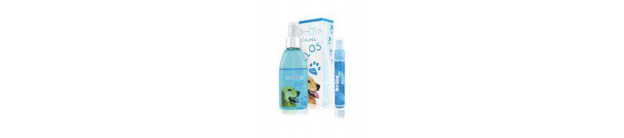 Perfumes para mascotas